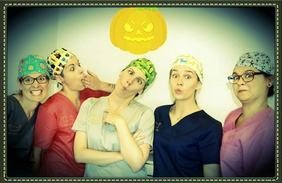 Gruppenbild humoristisch Halloween Isabel, Jana, Greta, Nadine